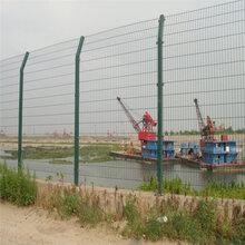 巨人供应双边丝护栏网道路护栏网完全防护网专业浸塑欢迎选购
