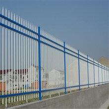 巨人专业生产锌钢护栏网别墅护栏网围墙护栏网安全隔离网价低质优欢迎选购