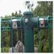 巨人供应双圈护栏网围墙护栏网小区护栏网道路安全防护网欢迎选购