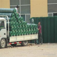 巨人专业生产荷兰网玉米存储网养殖网适合大地面积使用价低质优欢迎来电咨询