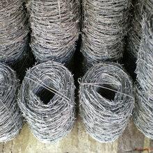 巨人专业生产刀片刺绳围墙护栏网安全防护网安全隔离网刺绳欢迎选购