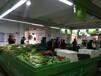 芙蓉区农贸市场铺位、摊位招租