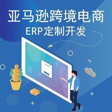 跨境電商亞馬遜ERP系統開發定制、店鋪運營指導