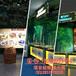 广州卓远虚拟现实突击战神9d虚拟现实体验馆?#29992;?#34394;拟现实体验馆