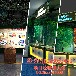 广州卓远小黄萌9dvr虚拟现实体验馆?#29992;藇r设备多少钱