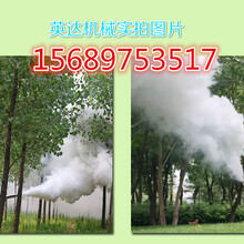 背负?#38477;?#21551;动弥雾机烟雾水雾打药机厂家/价格图片