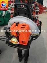 厂家热销农用背负式大棚吹雪机吹风机大功率汽油动力吹尘机视频/图片