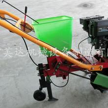 汽油精播机图手扶车播种机谷子精播机覆膜施肥播种机图片