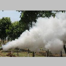 全新耐用新款葉面施肥打藥機農用汽油彌霧機報價圖片