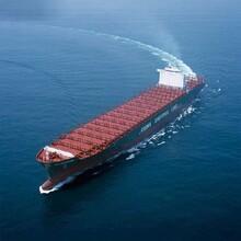 专业提供果汁饮料美国到东莞进口运输服务