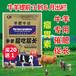 牛羊专用催肥剂牛羊催肥剂专用饲料添加剂那种效果好?牛羊催肥剂厂家直销
