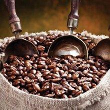 上海进口咖啡豆报关公司