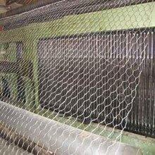 供甘肃兰州金属丝网和天水丝网详情