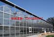 北京建100亩玻璃温室需要多少钱?