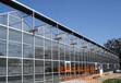 益阳玻璃大棚建设/益阳玻璃大棚厂家/益阳玻璃大棚价格