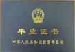 吉林省成人高考本科自考專科拿證快