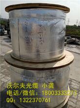 济南沃尔夫ADSS-48芯光缆电力光缆建设图片