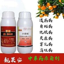 桔子叶子黄化缺素目前好用的营养杀菌剂