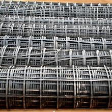 实体厂家长期供应GS5050土工格栅钢塑土工格珊、现货直销