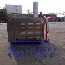 河南洗车机厂家推出新款燃气蒸汽洗车设备电加热蒸汽洗车机汽车美容设备