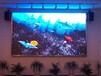 激光屏幕-dlp激光屏幕-清大视讯