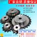 德瑞加工定制不锈钢链轮链条10A12A16A网带链板烘干机输送设备厂家直销