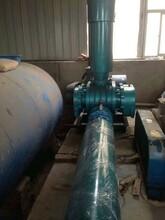 罗茨鼓风机#125污水处理