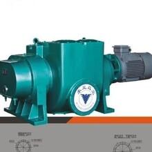 ZJP-2500罗茨真空泵图片