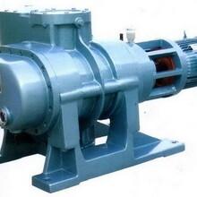 ZJP-600、ZJP-1200罗茨真空泵图片