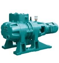 ZJP-150/ZJP-300罗茨真空泵图片