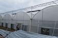 晋禾源山西温室大棚建设
