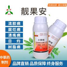 芒果角斑病怎样防治用靓果安杀菌剂厂家直销