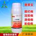 辣椒灰霉病叶霉病的防治用有机农药杀菌剂靓果安厂家直销