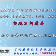 专注荥阳网站推广优化,郑州网站建设营销公司