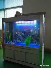 康家辟谷魚養殖凈化設備圖片