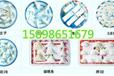 水饺机饺子馆食品生产厂家专用小型饺子加工设备速食水饺生产设备