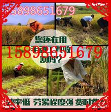 果园除草松土一体机贵州灵活操作茶园果园除草机图片
