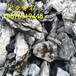 英石价格安徽英石供应商宏业奇石场产地直销英石假山石
