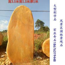 景观石,风景区园林景观石,刻字黄蜡石产地