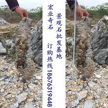 英石奇石,条形状的英石图片,英石奇石价格,宏业奇石场供应英石奇石
