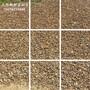 1至3公分鹅卵石价格广东鹅卵石厂家天然鹅卵石批发鱼池贴边专业鹅卵石图片