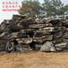 英石价格庭院英石假山石英石批发价广东大型英石厂家直销