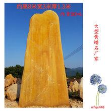 大型黄蜡石厂家价格实惠梅州大型黄蜡石价格
