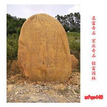 广场景观石刻什么字好大型黄蜡石图片广东黄蜡石批发