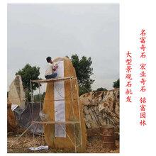 大型景观石批发广东大型黄蜡石厂家直销景观石