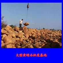 大型黄蜡石批发基地规格齐全货源充足广东黄蜡石价格
