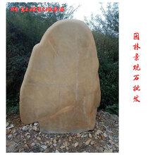园林景观石批发英德园林景观石厂家大型黄蜡石图片