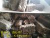 泰安:周边锅炉用生物颗粒环保型企业