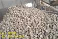 卫辉市:附近生物质颗粒全国发货