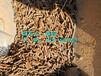 抚州:附近玉米秸秆颗粒多少钱一吨(只有煤的1/20)